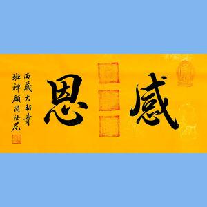 中国佛教协会副会长,中国佛教协会西藏分会第十一届理事会会长十三届全国政协委员班禅额尔德尼确吉杰布(感恩