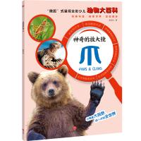 """神奇的放大镜:爪(""""微距""""式呈现全彩少儿动物大百科,全面、精准展现奇妙的动物世界,激发孩子的求知欲与探索精神!)"""
