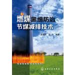 燃煤黑烟防治与节煤减排技术
