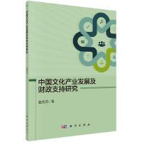 中国文化产业发展及财政支持研究
