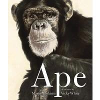 【预订】Ape 9780763649746