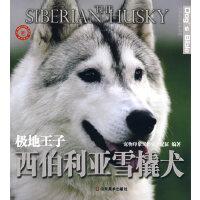 世界名犬驯养宝典-极地王子 西伯利亚雪橇犬