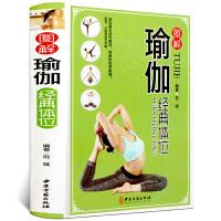 图解瑜伽经典体位 瑜伽基本动作解码 修炼瑜伽基础方法教程大全 美容养颜减肥健康瑜伽纤体 瑜伽零基础瘦身美体运动 减肥瑜