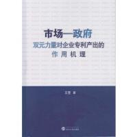 市场-政府双元力量对企业专利产出的作用机理