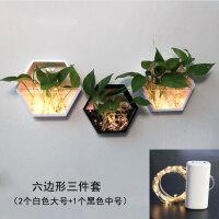 植物壁饰家居客厅墙面装饰品田园墙壁装饰挂件水培植物绿萝创意壁挂花盆