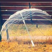 16骨透明雨伞长柄伞创意雨伞自动伞男女雨伞透明伞广告伞