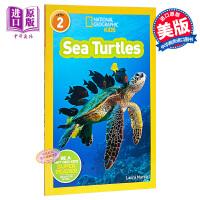 【中商原版】英文原版 National Geographic:Sea Turtles 国家地理:海龟