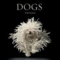 【预订】Dogs 9780810996533
