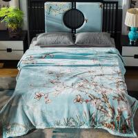 珊瑚毛绒毯子冬季用加厚法兰绒拉舍尔毛毯加绒床单人保暖双层被子 200cmx230cm 约8斤