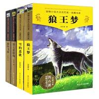 沈石溪动物小说4册正版狼王梦 第七条猎狗 *飞渡 雪豹悲歌