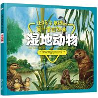 让孩子着迷的第一堂自然课――湿地动物