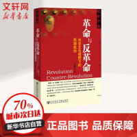 革命与反革命-社会文化视野下的民国政治 王奇生 著