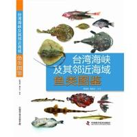 3 初级版-海格立斯大力神-英语名篇阅读精选 9787110081617 科学普及出版社