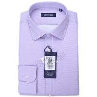 youngor/雅戈尔 新品 BN12648LBA男士紫色保暖长袖衬衣
