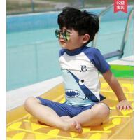 户外新款儿童泳衣卡通鲨鱼分体短袖宝宝游泳衣中小童沙滩温泉男童泳装