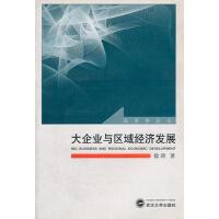 大企业与区域经济发展/经济学论丛