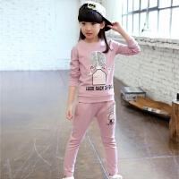 童装女童秋装套装2017韩版新款儿童运动套装春秋卫衣两件套