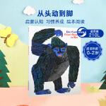 英文原版 From Head to Toe 从头到脚跟我学 Eric Carle艾瑞卡尔 经典平装大开本 廖彩杏推荐