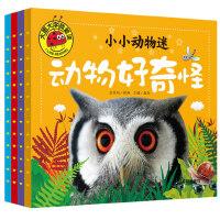 全套4册小小动物迷彩绘注音版 婴儿认知启蒙早教书籍幼儿园儿童绘本适合0-1-2-3-4-5-6周岁带拼音动物王国世界百