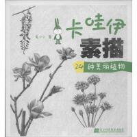 卡哇伊素描24种美丽植物 兔小小