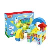 小翰童磁力片积木大颗粒拼插磁力块DIY益智启蒙动手玩具A2-050