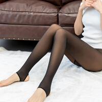 春秋薄款女单层假透肉打底裤真微透肤袜外穿一体无缝连裤袜 均码