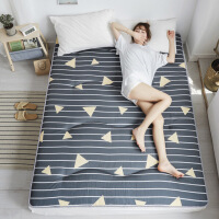 亲肤床垫单人学生宿舍1.5m榻榻米垫子印花双人家用床上用品
