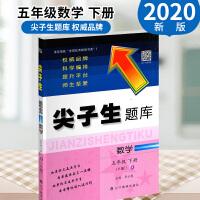 赠一2020春 尖子生题库五年级 数学下册 人教版RJ 小学5年级同步