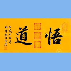 中国佛教协会副会长,中国佛教协会西藏分会第十一届理事会会长十三届全国政协委员班禅额尔德尼确吉杰布(悟道