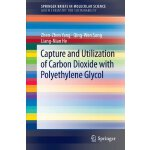 Capture and Utilization of Carbon Dioxide with Polyethylene