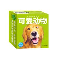 小宝贝启蒙金卡:可爱动物(新版)