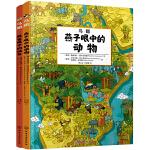 鸟瞰:鸟类眼中的城市和动物(套装共2册,赠3D立体纸模)