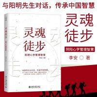 灵魂徒步阳明心学管理智慧李安著北京大学出版社新款新品