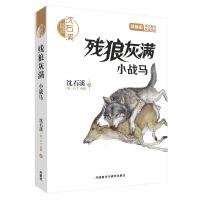 沈石溪和他喜欢的动物小说:残狼灰满.小战马