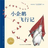 白日梦想家系列:小企鹅飞行记(平)