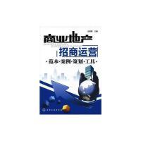 商业地产招商运营:范本・案例・策划・工具 王高翔