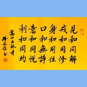 第九十十一十二届全国人大代表,少林寺方丈释永信(见和同解)
