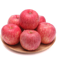 【陕西特产】洛川红富士苹果礼盒2.5kg 新鲜水果洛川红富士苹果* 9枚礼盒2.5kg