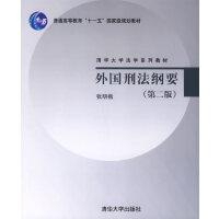 外国刑法纲要(第二版)