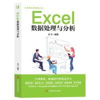 计算机实用技能丛书 Excel数据处理与分析 计算机与互联网电脑办公软件进阶技巧基础入门到精通