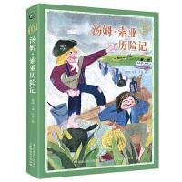 童趣文学新课标名著阅读・汤姆・索亚历险记