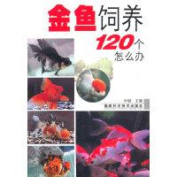 金鱼饲养120个怎么办