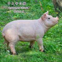 仿真工艺品摆件雕塑小猪摆件家居装饰品庭院花园雕塑动物模型场景小品个性礼物工艺品 灰色 中大号白猪