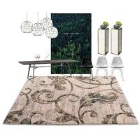 现代简约客厅地毯欧式沙发茶几毯地毯卧室床边家用垫子格