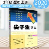 2020秋 尖子生题库二年级语文上册人教版小学生2课本同步提分题库