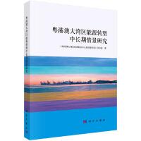 粤港澳大湾区能源转型中长期情景研究