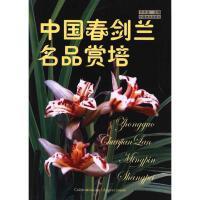 中国春剑兰名品赏培 中国林业出版社