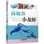 高效养小龙虾(高效养殖致富直通车)