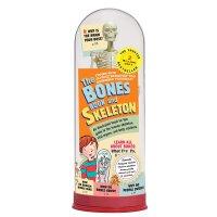 The Bones Book and Skeleton 人体骨骼模型书(盒装)