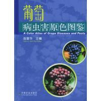葡萄病虫害原色图鉴 中国农业出版社